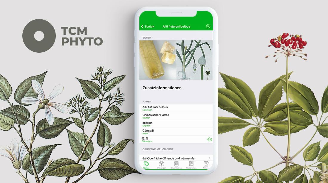 Pyto App TCM