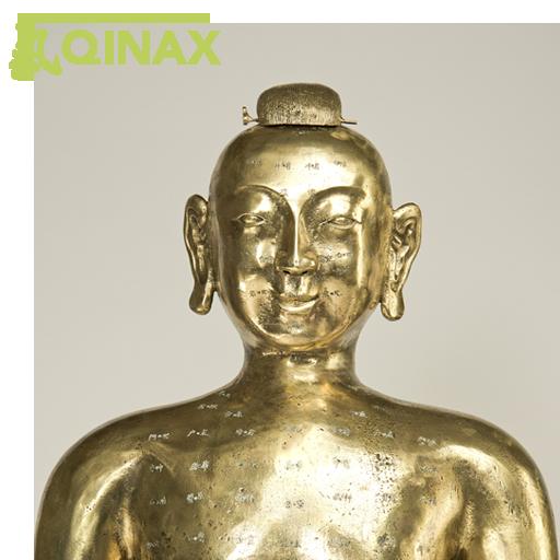 Qinax - TCM Medikation